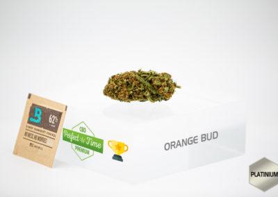 CBD Orange Bud