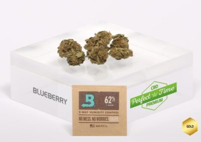 BLUEBERRY-Boveda