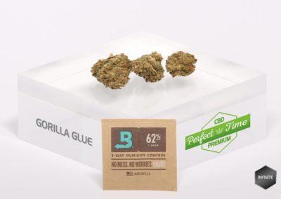 GORILLA GLUE-Boveda