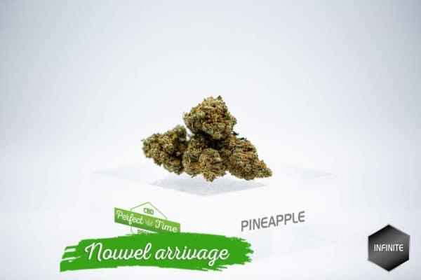 Pineapple Sorbet 3,84%