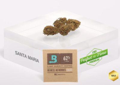 SANTA-MARIA-Boveda-G