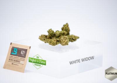 white widow fleur cbd