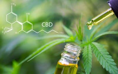Quels sont les bienfaits de l'huile de CBD ?