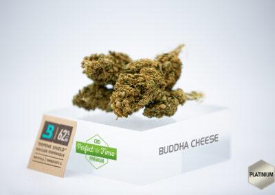 Buddha Cheese CBD