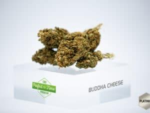 Buddha Cheese 2,92%