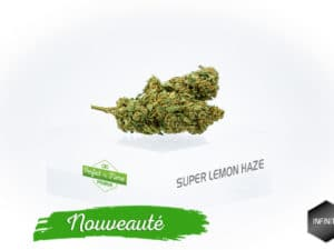 Super Lemon Haze 5,30%