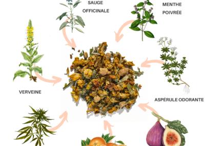 Tisane antidote d'Oree Mijane Fleurs CBD